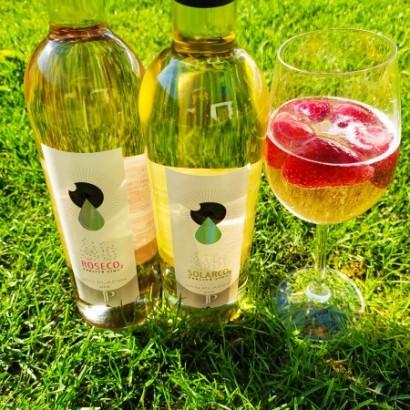 Perlivá vína SolarCo2 a RosénCO2